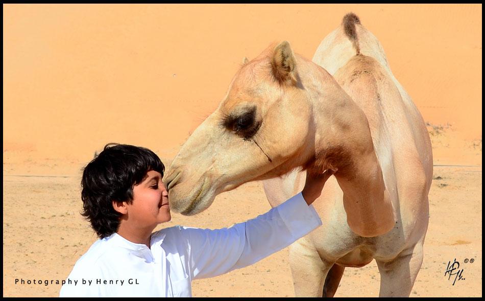 HGL-Camel-Liwa-kid