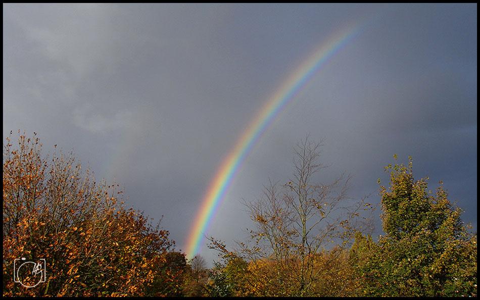 HGL-Rainbow