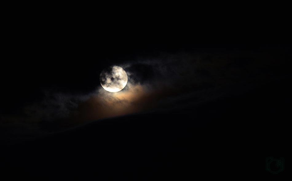 HGL-Night-evil