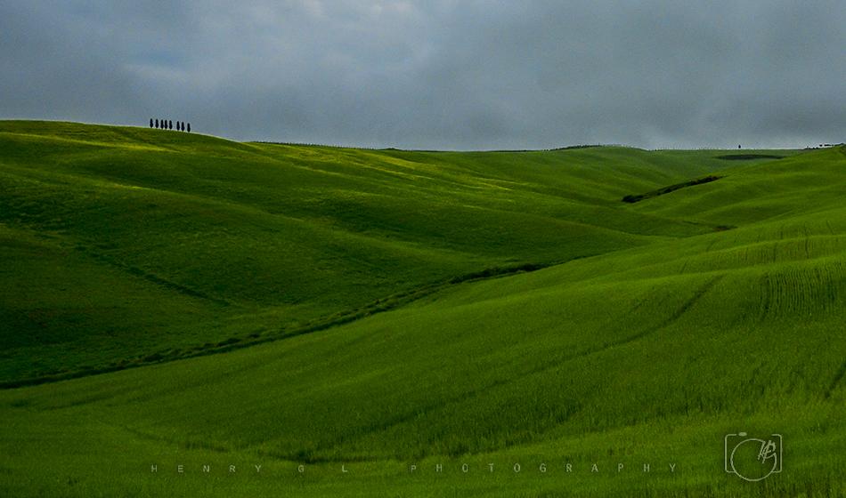 HGL Grass Lands